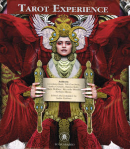 Book Cover: Tarot Experience
